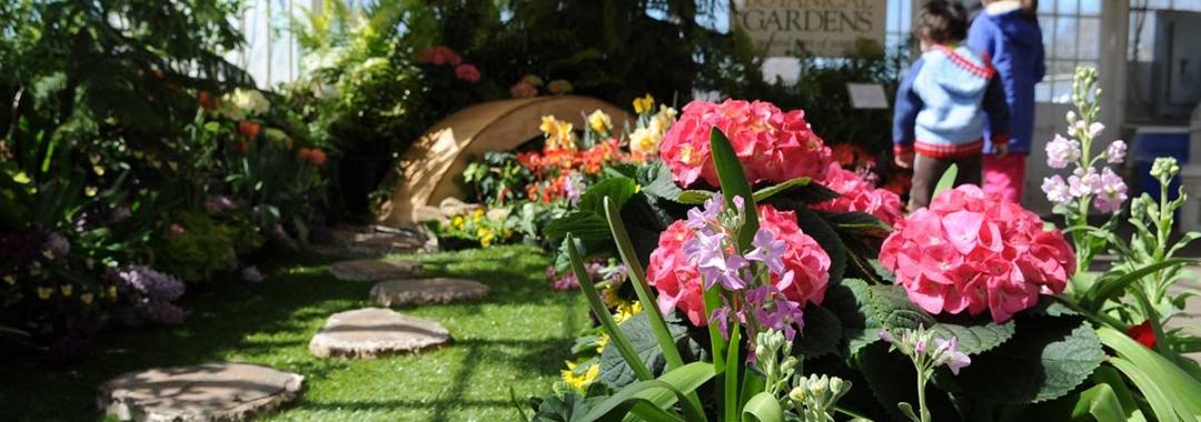 Botanical-Gardens-Spring-Flower-Show