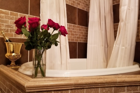 Robin Room bath – Buffalo Harmony House